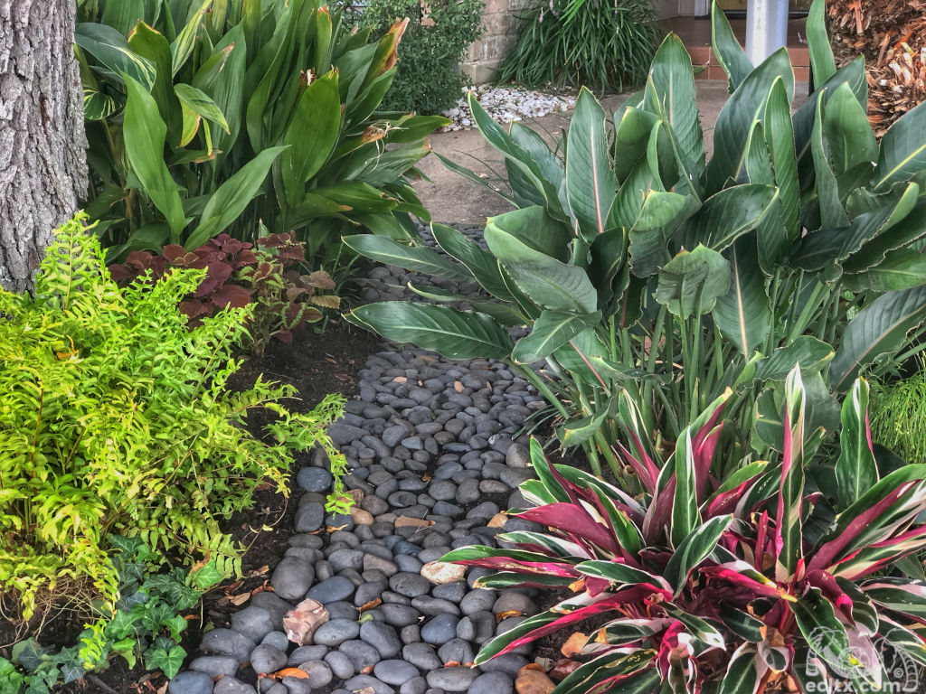 Earth Creations Landscaping Shade Garden
