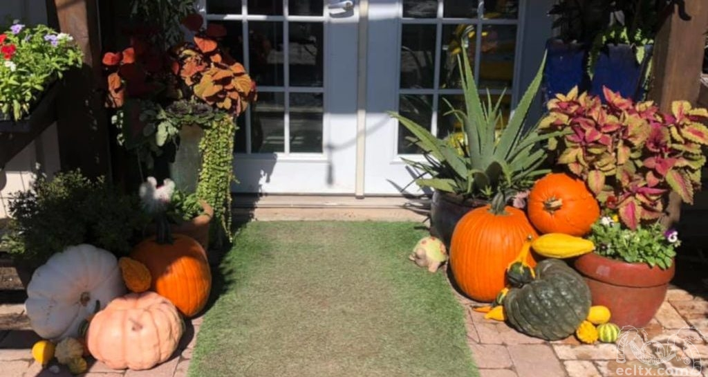 Earth Creations Landscaping Fall Seasonal Designs